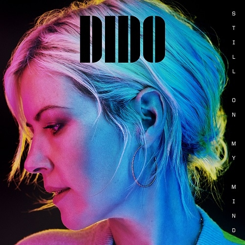 Dido: New Album & Singles