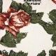 MEMORY LANE: Tindersticks – Curtains (1997)